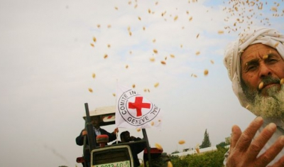 Rafah, 2009. The ICRC provides the farmers located in the buffer zones with wheat seeds
