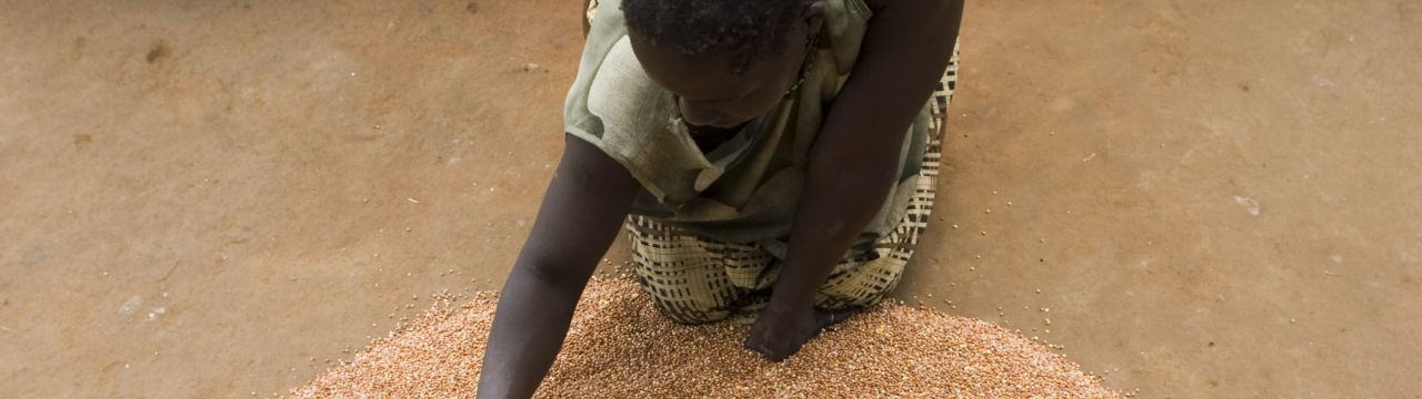 Woman drying beans on the ground