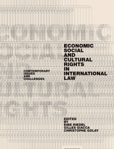 Cover of the book Economic, Social, and Cultural Rights in International Law. Contemporary Issues and Challenges