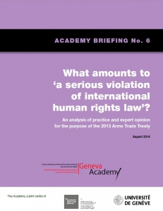 Cover of the Briefing No6: What Amounts to Serious Violations of International Human Rights Law