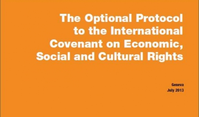 Cover of the In-Brief No2: The Optional Protocol to the International Covenant on Econimic, Social and Cultural Rights