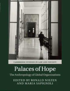Coverpage of the book Palaces of Hope